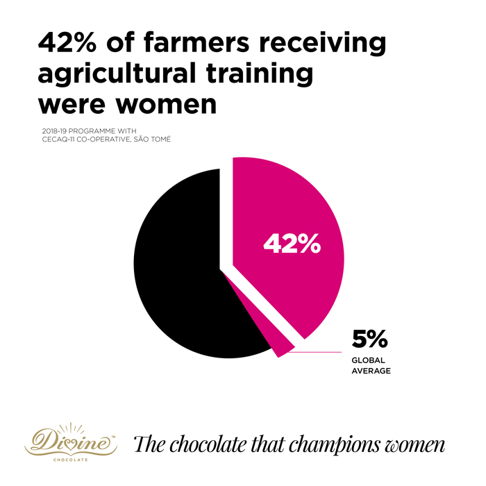 Divine Chocolate square infographic with pie chart