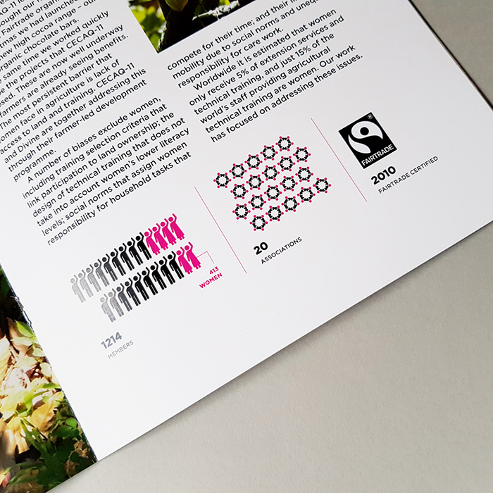 Range of Divine Chocolate Infographics in Brochure on white background