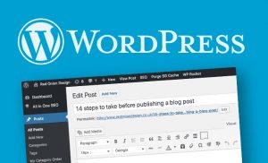 14 steps to take BEFORE publishing a blog post