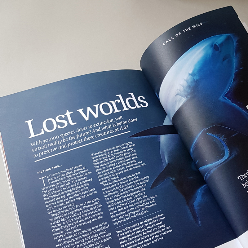Chevening Magazine Spread with Shark